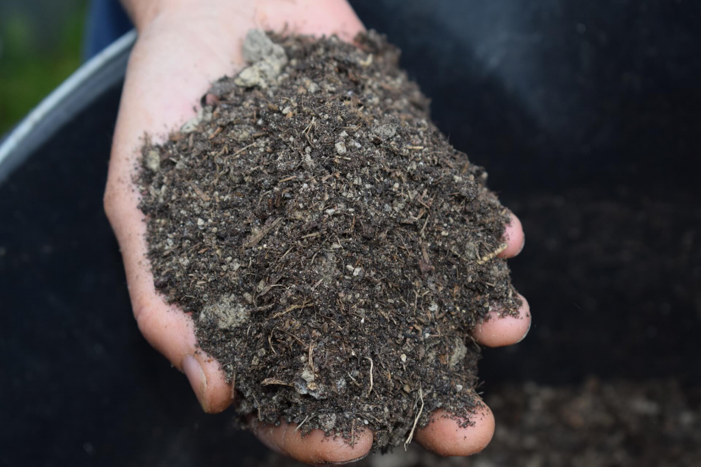A person holding humus soil in his hand for gardening showing the best mulches for vegetable gardens